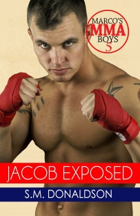 a26a8-jacob2bbook_updateebook